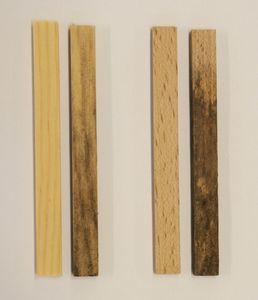 Dargestellt sind je 2 Kiefer- (links) und Buche- (rechts) Holzprobe, wobei der linke Prüfkörper unbehandelt und der rechte für 10 Tage nach DIN V ENV 807 (Moderfäule) belastet wurde.