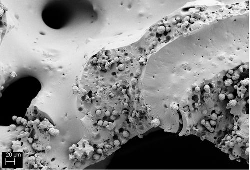 REM-Aufnahme eines Calciumcarbonat-haltigen PU-Schaumes