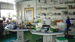 Laboratories in the new building of INNOVENT (2001)