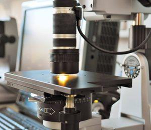 Zoomobjektiv 20 - 200 fache Vergrößerung, mit variabler Beleuchtung