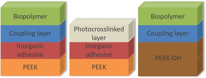 Strategies for the coating of PEEK-surfaces