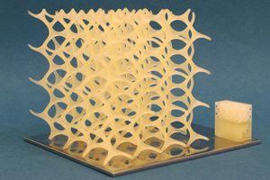 MLP-Druck (Beckmann-Institut) einer ausbrennbaren Polymermischung