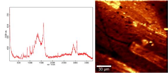 Dargestellt sind ein Raman-Spektrum und eine AFM-Aufnahme eines schwarzen Kunststoffpellet.