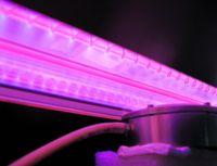 172 nm Xenon Excimer-Lampe (Nahansicht) und Reaktor mit Precursorgaszuführung