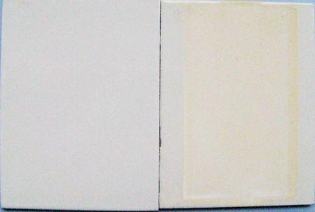Die Abbildung zeigt zwei mit weißem Epoxidlack beschichtetet Bleche. Das linke Blech ist die Referenz und ist vollständig weiß. Das rechte Blech ist das belastete Blech. Auf dem belasteten Blech ist eine starke Gelbfärbung des Lackes zu sehen.